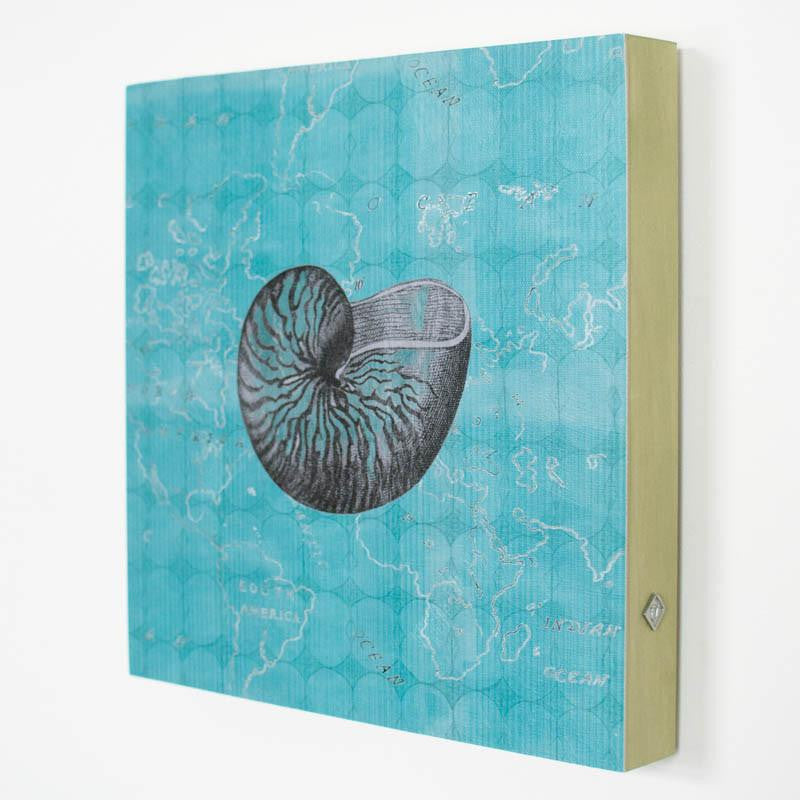 Nautilus Shell in Teal Art Panel