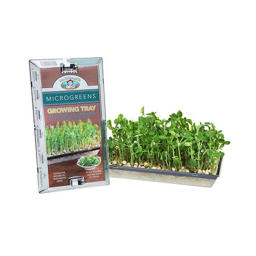 Microgreen Growing Kit