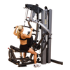New 2021 Body-Solid Fusion 600 Personal Trainer