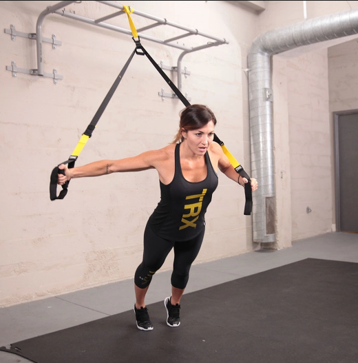 TRX Commercial Suspension System
