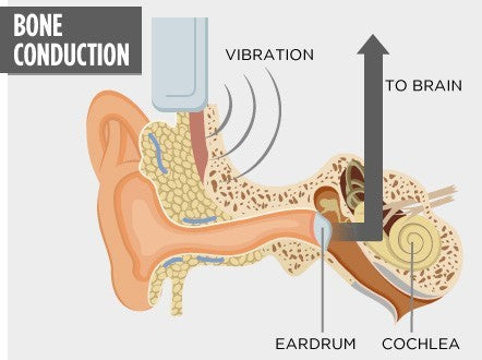 Bone Conduction Hearing