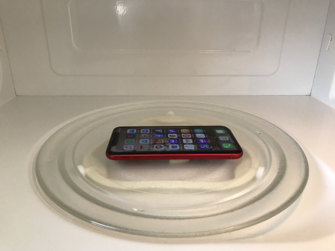 Cell Phone in a Microwave