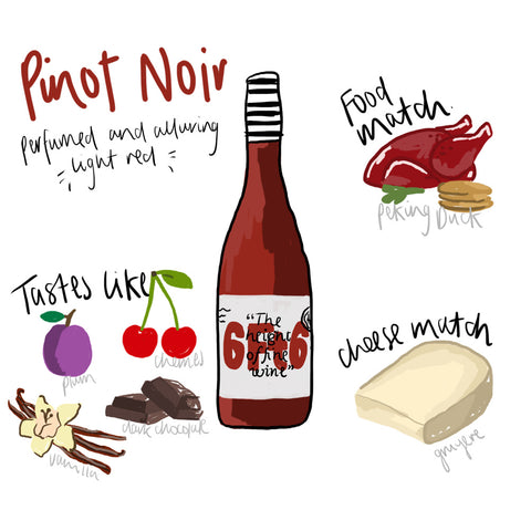 Pinot Noir - 6 facts you need to know