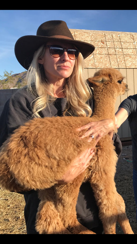 Alpaca Birth 101
