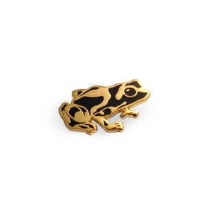 Poison Dart Frog Pin – Gold