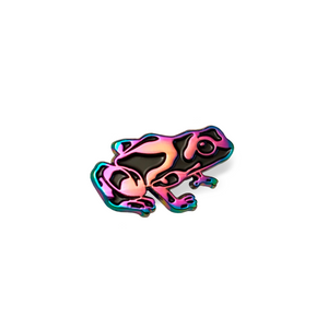 Poison Dart Frog Pin – Rainbow