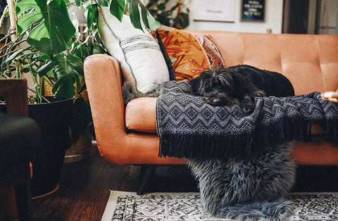 fall decor cosy throws