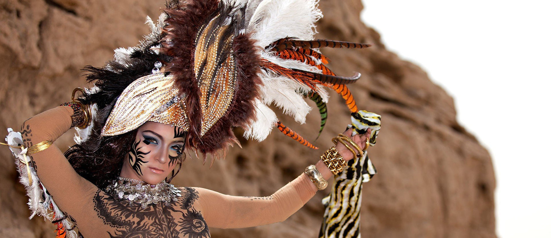 b4e81671033 Ostrich | Peacock | Pheasant | Turkey | Coque | Duck. Vast variety of  Feathers