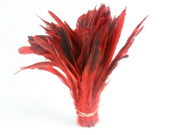 Coque Chinchilla Feather Fringe 10-12 inch - FancyFeather.com