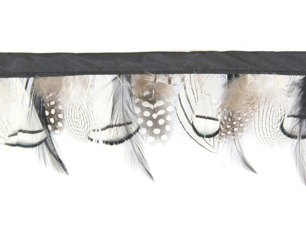 Guinea Pheasant Hackle Feather Fringe - FancyFeather.com