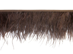 Ostrich Feather Fringe