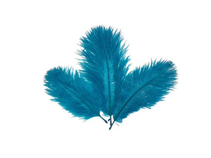 Ostrich Belly Feathers - Fancy Feather