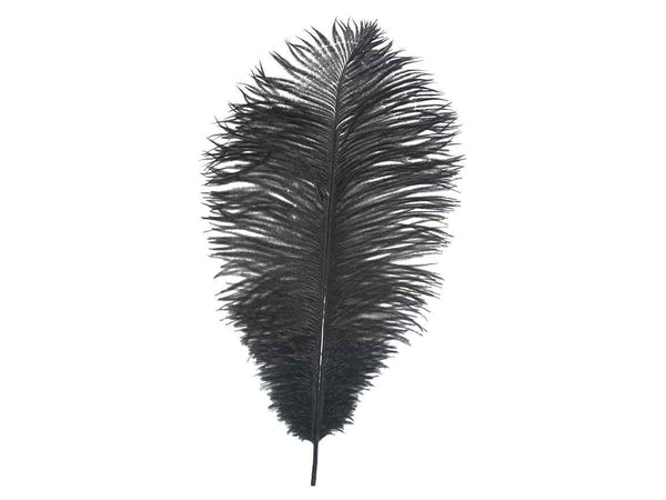 Ostrich Drab Feathers | Premium Ostrich Feathers - FancyFeather.com