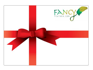 Gift Card - FancyFeather.com