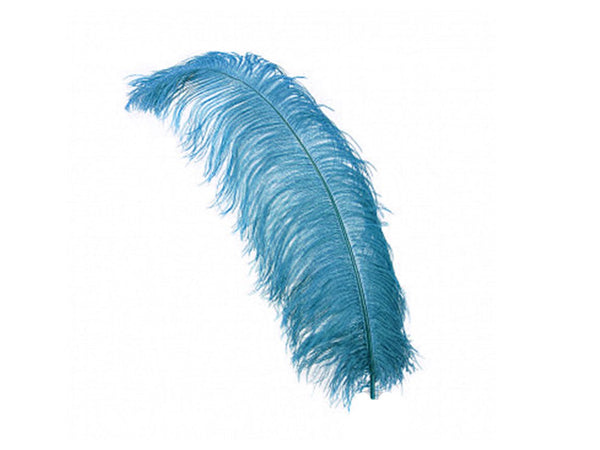 Ostrich Wing Feathers | Ostrich Plumes