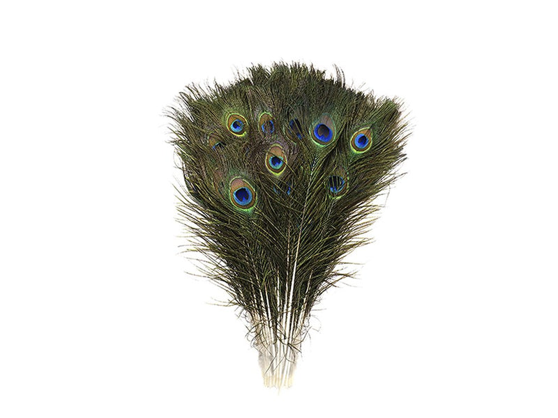 Peacock Eye Feathers