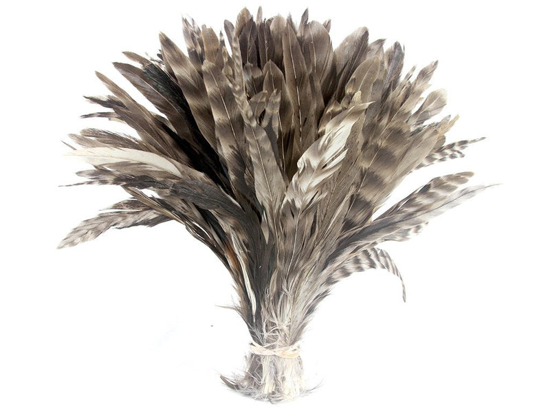 Feather Fringe | Coque Chinchilla - FancyFeather.com