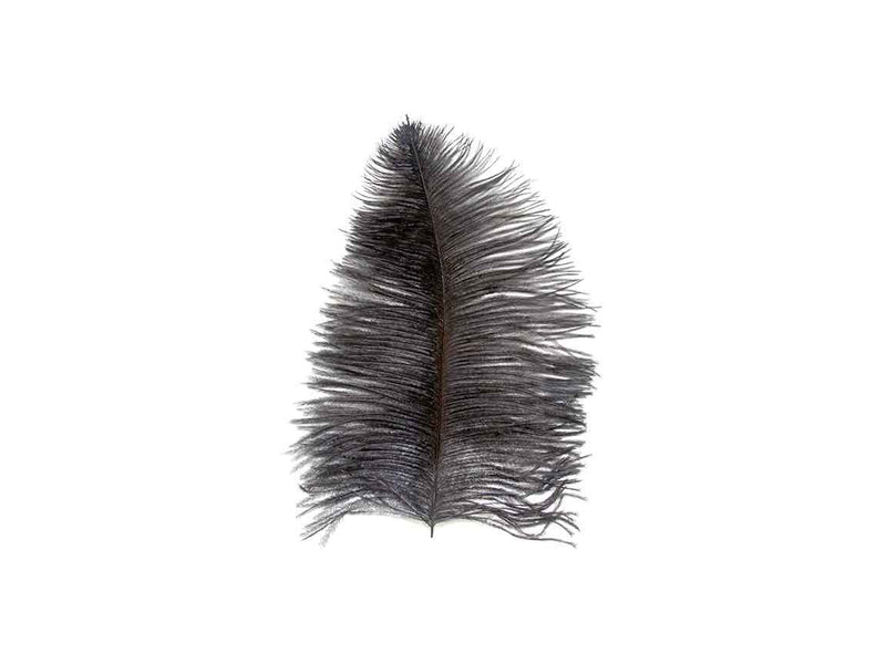 Ostrich Feathers | Ostrich Wing Feathers