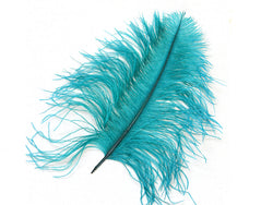 Ostrich Wing Tip Feathers