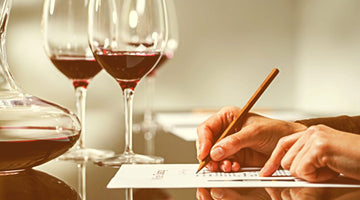 How to Start Learning More about Wines (No Matter What Experience You Currently Have)