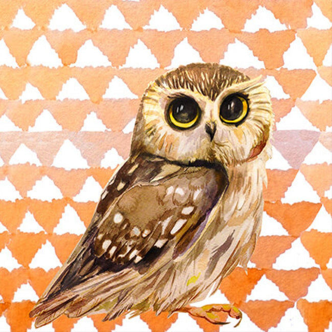 Kids Wise Owl Canvas Artwork