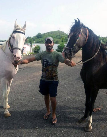 ravindra jadeja and his pet