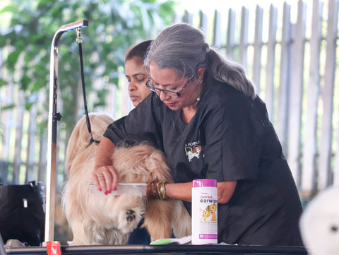 Pet care while grooming