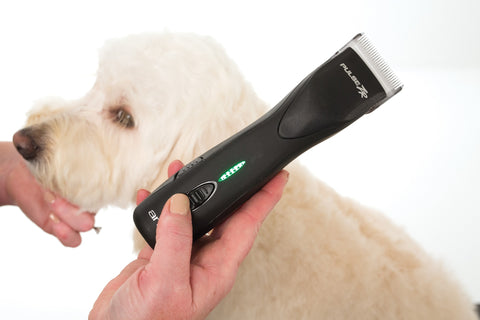 5-speed pet clipper for professional groomers