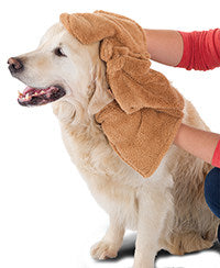 Dry your pet