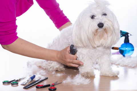 Using right grooming tools