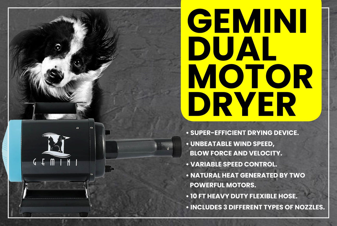Gemini Dryer Website Banner