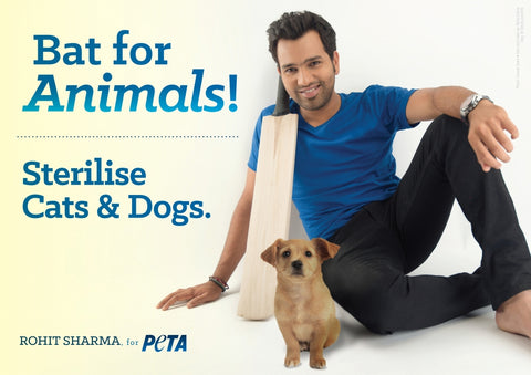 rohit sharma and his pet