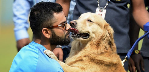 virat kohli and his pet dog