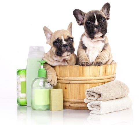 shampoos and conditioners for pets