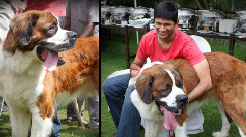 Venkatesh prasad with his pet dog