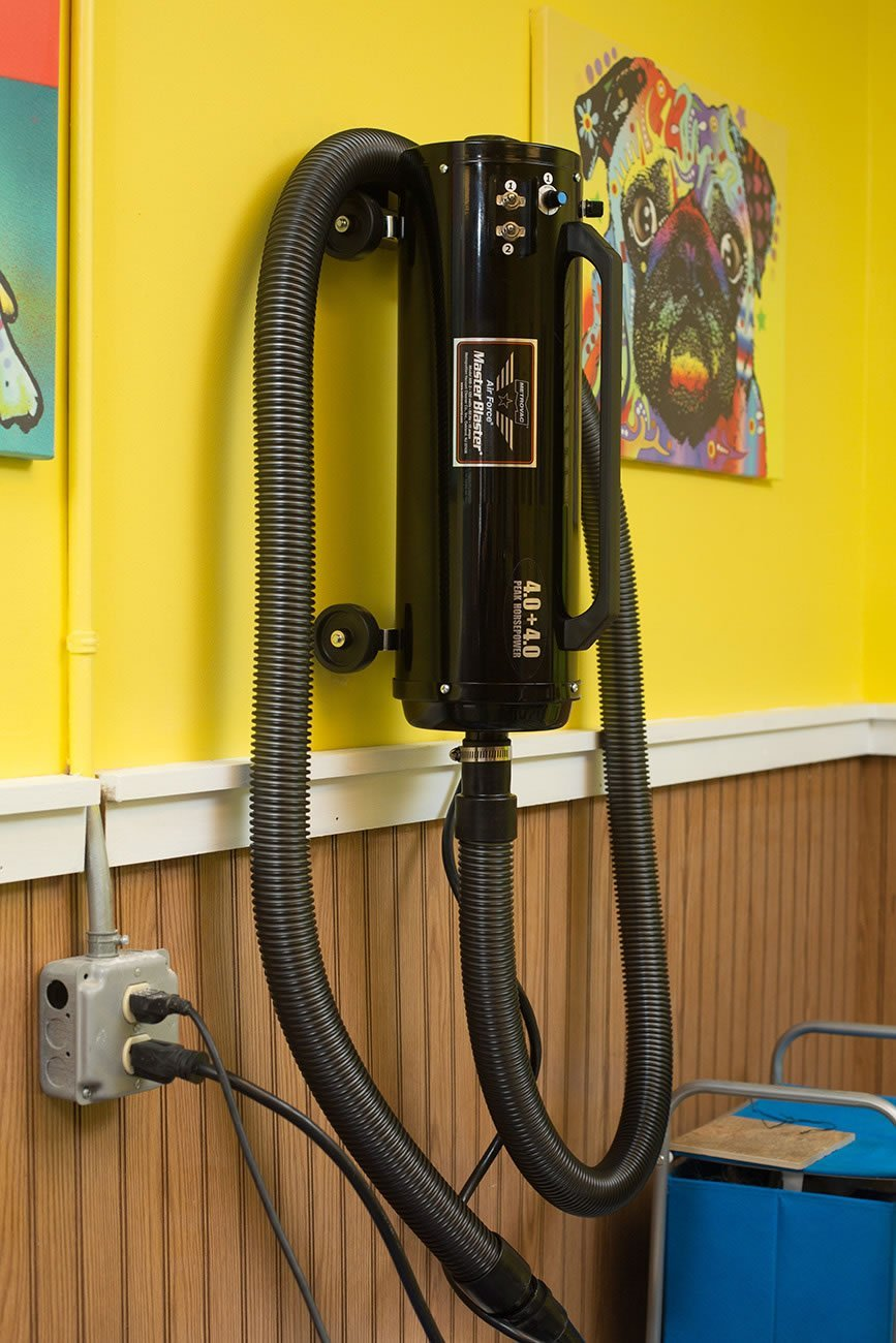Metro® Air Force® Master Blaster® Variable Control Pet Dryer - ABK Grooming Dog Dryer Machine, Dog Grooming Dryer, Grooming Dryer, Pet Grooming Dryer, Dog Groomers Hair Dryer, Pet Grooming Hair Dryer, Dog Grooming Dryer For Sale, Pet Grooming Blow Dryer, Dog Grooming Blow Dryer, Pet Blower Dryer, Groomer Blow Dryer, Dryer Dog, Best Hair Dryer For Dog Grooming, Pet Dryer Machine, Dog With Blow Dryer, Air Dryer For Dogs,