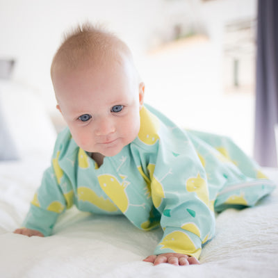 Sleepy Hugs, Hands In and Out, sleeping baby, swaddle transitioning, startle reflex, swaddle sleep sack, swaddle sack, sleep suit, organic