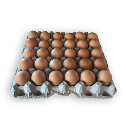 Harrington Lane Eggs - 1 Flat (2.5 Dozen)