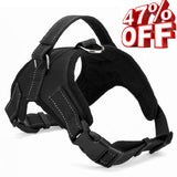 AmsterGear Power Padded Harness