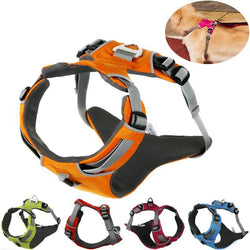 AmsterGear Reflective Dog Harness