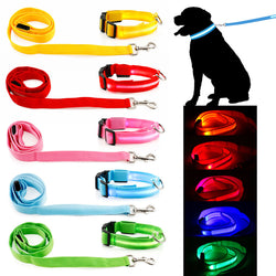 Light-Up Dog Safety Leash and Collar Set