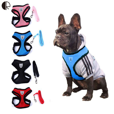 Breathable Harness + Leash Set For Smaller Dogs