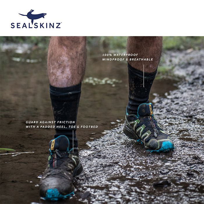 Sealskinz Hiking Mid Mid 登山防水襪 (中筒) (Grey/Purple)