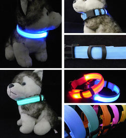 Glowing LED Nylon Collar for Pet Dog  Light-Up Night Safety Collars