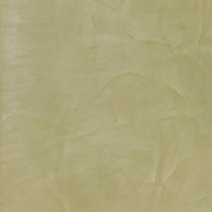Lucidato 607 - The Polished Plaster Company