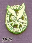 1977 Pegasus Pin - Horseshoe/Gold on Green Plastic