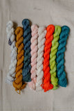 Simply Stella Mini Skeins