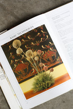 Load image into Gallery viewer, The Dried Flower Arranger Book