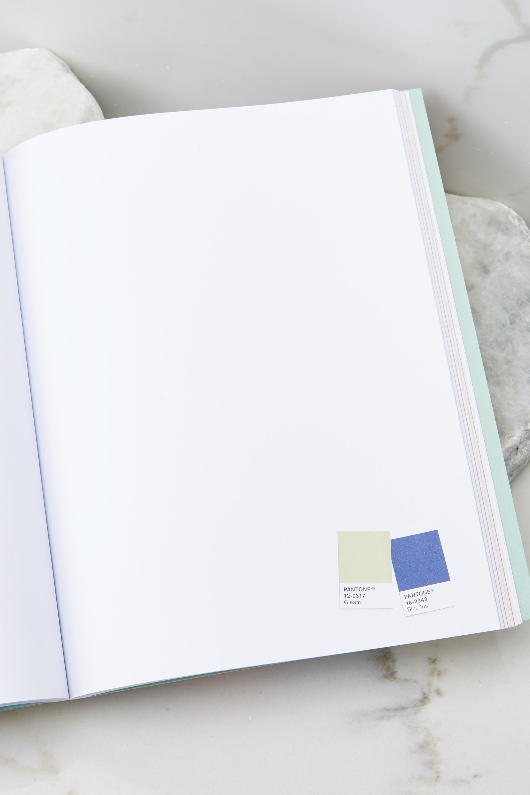 3 Pantone® Artist And Writer's Notebook at reddress.com