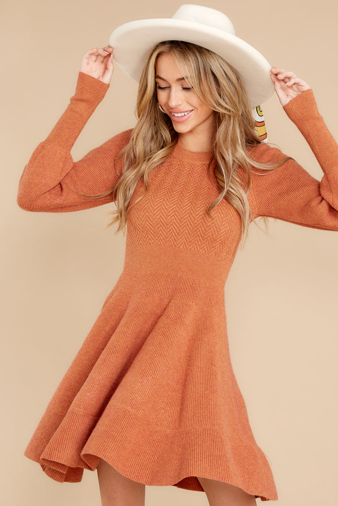 1 Around The Bend Black And Camel Sweater Dress at reddress.com
